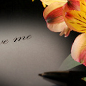 OCCASION  WEBSET 10345- 'FORGIVE ME..'